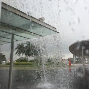 シンガポールの気候とヘアー